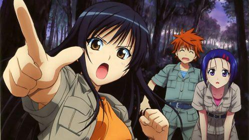 Faça parte da equipe do Animedia